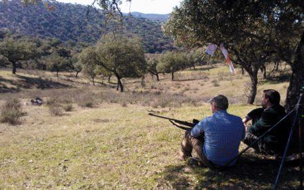 Dos detenidos por estafar ofertando monterías en fincas de Viso del Marqués