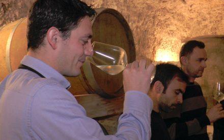 Cata de vinos naturales en 11 Ánforas