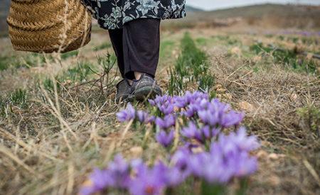 Luchar contra el despoblamiento con la fotografía «Foto Rural 19»