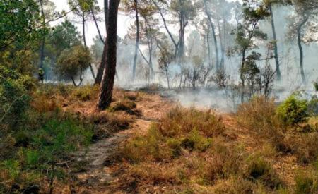 Estabilizado el incendio en Barchín del Hoyo