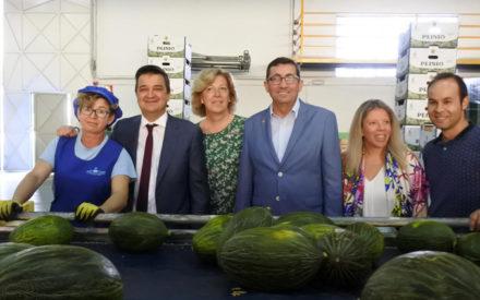 El Gobierno regional canalizará fondos de promoción específicos para impulsar la Indicación Geográfica Protegida Melón de la Mancha