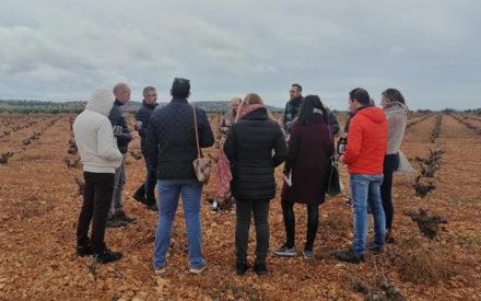 'De la Tierra a la Boca': Actividad celebrada por el Día Europeo del Enoturismo