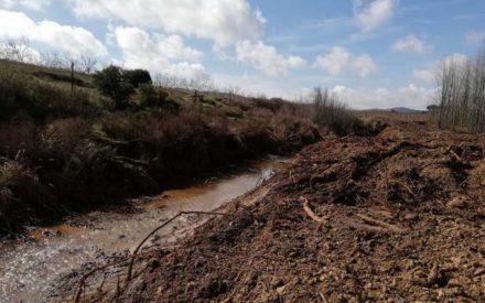 IU Valdepeñas reclama a la CHG buenas prácticas en actuaciones de conservación, mantenimiento y mejora de cauces