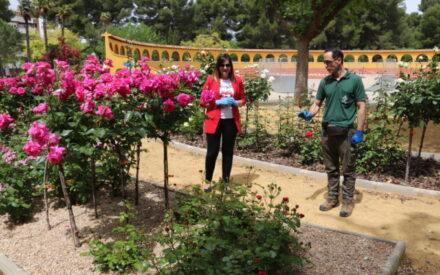 El Servicio de Parques y Jardines de Manzanares pone a punto los espacios verdes
