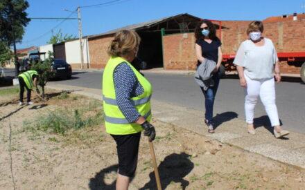 El Gobierno de CLM fomenta el empleo femenino y de jóvenes cualificados en el municipio de El Robledo
