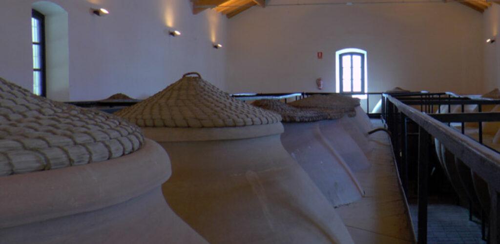 El Museo del Vino organiza para el día 3 de septiembre una cata original